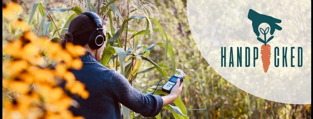 Handpicked (scientist in a cornfield with logo to the right)