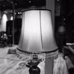 (B&W image of an old-fashioned lampshade)