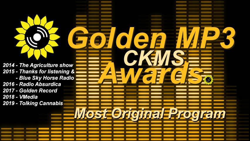 2020 Golden MP3 Awards: Most Original Program