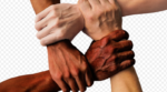 Four arms of different skin tones are reaching out towards each other from four sides of the image. Each hand is clasping the wrist of the next arm, creating a square of hands/wrists in the middle of the image.